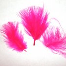 "100 + Small HOT PINK 1-3"" Marabou Fluff Feathers 1/4 oz"