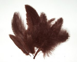 Spotted Guinea hen feathers 1/4 oz packet Body Plummage Brown