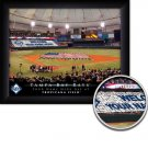 Tampa Bay Devil Rays Stadium Print With Your Name