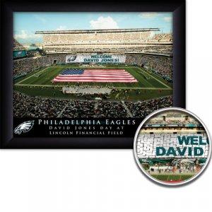 Philadelphia Eagles Stadium Print With Your Name