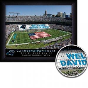 Carolina Panthers Stadium Print With Your Name