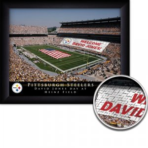 Pittsburgh Steelers Stadium Print With Your Name