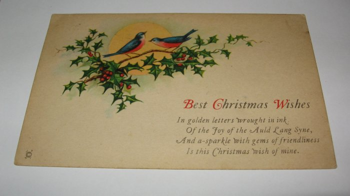 Bluebirds and Holly Christmas postcard lot  C67