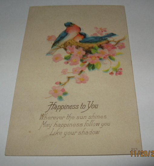 Happiness To You Bluebirds in Nest Vintage Postcard B-2