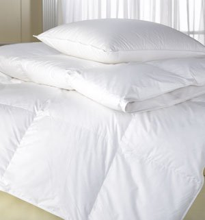 AZM 900TC WHITE GOOSE DOWN COMFORTER QUEEN