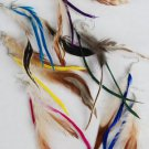 Wholesale lot hair Feather Extensions peacock grizzly earrings jewelry business
