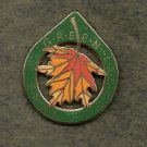 Green Lakes YMCA Folksmarch Lapel Pin