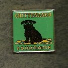 Chittenango YMCA Folksmarch Lapel Pin