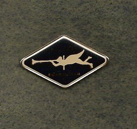 Manlius YMCA Folksmarch Lapel Pin