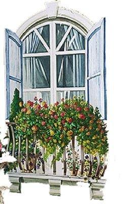 NU IN BOX Wallies PARIS WINDOW Big wall Mural 14207