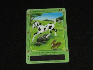 Bella Sara Card - Baby Bella Series:  Tumbleweed (41/92)