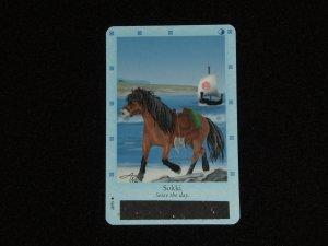 Bella Sara Card - Northern Lights:  Sokki (22/55)