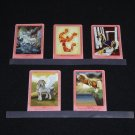 Bella Sara Ancient Lights Cards (5 Different)