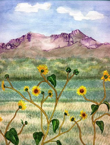 Valley Wildflowers matted print watercolor art Paula M