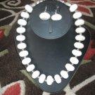 White Turquoise/Buffalo Turquoise necklace