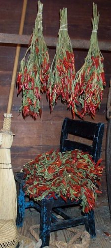 Dried Flowers-Chili Peppers
