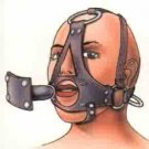 Deluxe Head Harness with Ball Gag