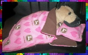 Pink John Deere Sleeping Bag & Pillow 4 Webkinz LilKinz FREE US AND CANADA SHIPPING
