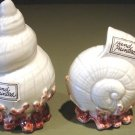 Pair Hand Painted Fitz & Floyd Seashell Salt & Pepper Shakers