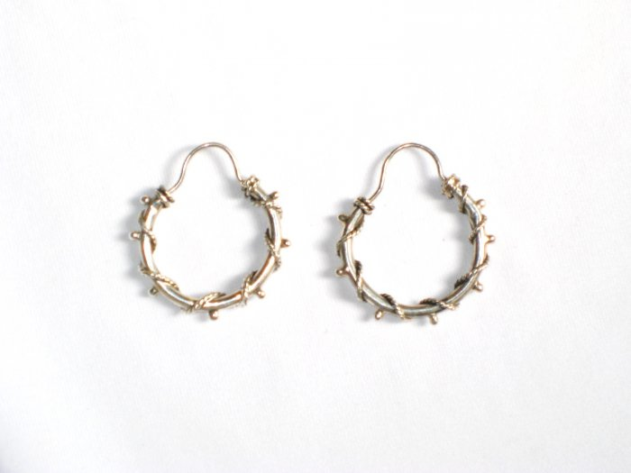 AQ077    Earrings in Sterling Silver