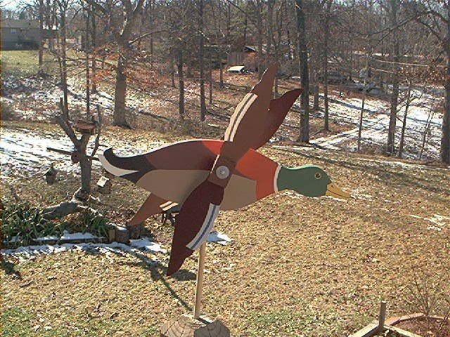 Mallard Duck Whirligig- Wind, Motion, Mobile
