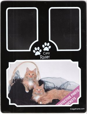 Cats Rule! Fridge Frame - Magnetic Photo Display Organizer by Pocketframe