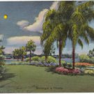 Moonlight in Florida  Vintage Linen Postcard  1943  C.T. Art-Colortone  FLA #0060
