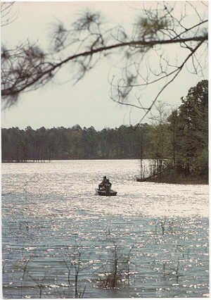 A Fisherman's Paradise, DeGray State Park, AR #0094