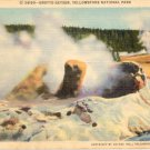Grotto Geyser, Yellowstone National Park Postcard  1935 WY #0228