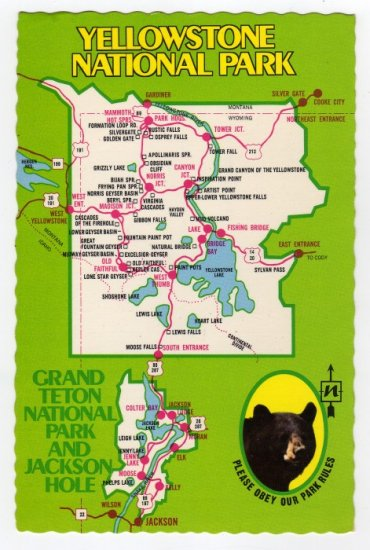 Map of Yellowstone National Park and Teton National Forest Postcard Mike Roberts #0365