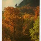 Autumn Spectacular at Chimney Rock, N.C. Postcard photo by Jim Doane  #0372