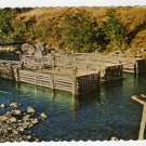 Chinook Salmon Traps in Yukon stream Alaska postcard Photo J. H. Bell  #0395