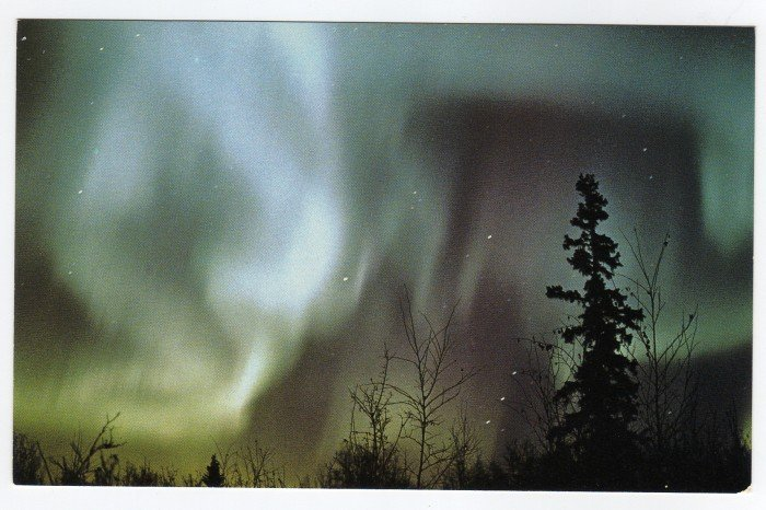 The Aurora Borealis Alaska Vintage Postcard Photo by Malcolm Lockwood  #0399