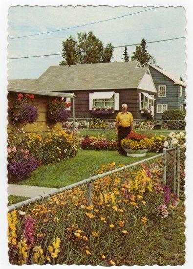 Flowers grown by Joe Hembreiker 1960s Postcard Fairbanks, Alaska  #0403