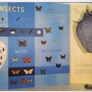 Insects Exhibit Sugarlands Visitor Center Great Smoky Mountains National Park postcard Gatlinburg TN