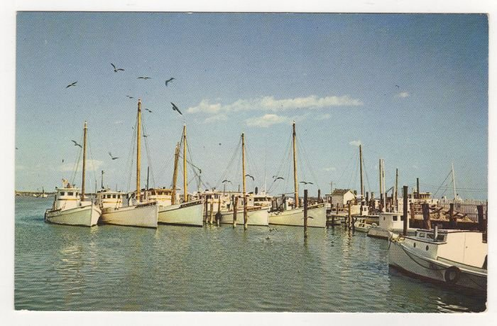 Tangier Island, VA home port fleet of boats postcard 1960s fishing crabbing oystering #0521