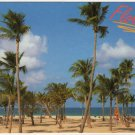 Blue Atlantic, Palm Trees and White Beaches Florida Postcard Photo by John Gordash  FL FLA #0527