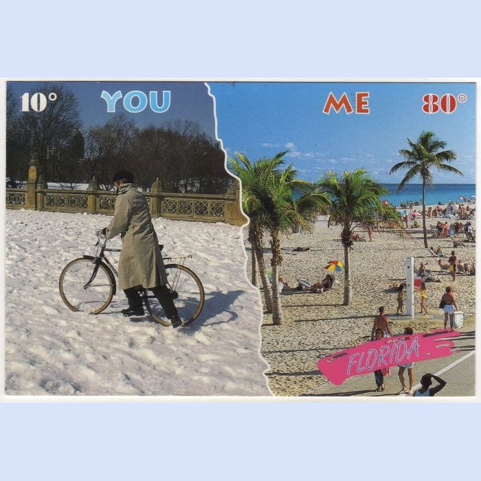 Florida Weather Humor Postcard Florida beaches at 80° You with Snow and 10 degrees  FL FLA #0523