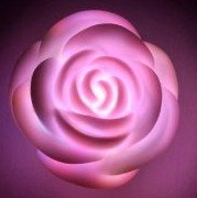 Romantic Rose Shape LED Light (Valentine's Day, romantic birthday..)
