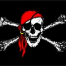 Jolly Roger Red Scarf Pirate Flag 3x5 Boat/Motorcycle