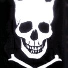 Skull Crown Pirate Flag 3x5 Boat Motorcycle