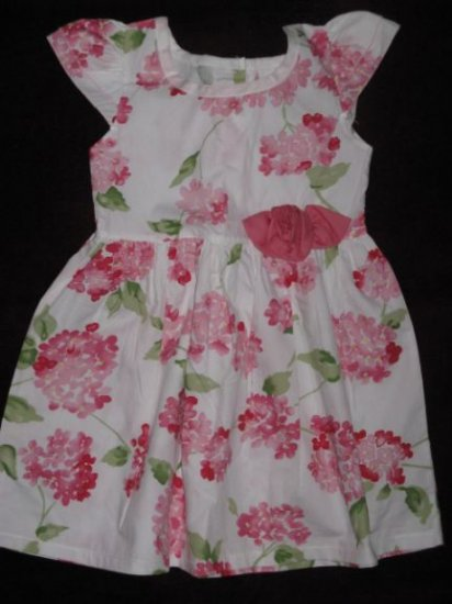 Little Sprouts rose dress