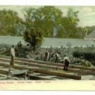 Greenhouse Construction Bronx Park NY c.1910 Postcard