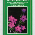 Wildflowers: A Quick Identification Guide to the Wildflowers of North America - Robert Mohlenbrock