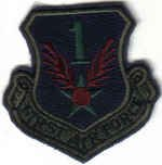 FIRST AIR FORCE USAF MILITARY INSIGNIA SUBDUED PATCH Tyndall AFB, Florida FIGHTER JETS AIRLIFT