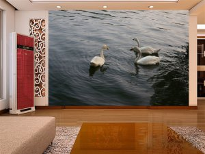 Wall Mural Wall Decor Wall Art--Swan Group