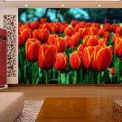 Wall Mural Wall Decor Wall Art--Golden Tulips