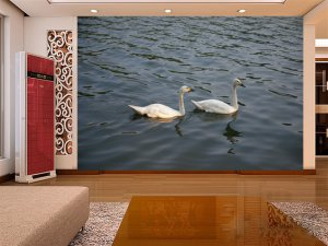 Wall Mural Wall Decor Wall Art--Double Swans