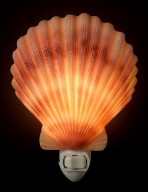 Scallop Shell Nightlight - Ibis & Orchid Designs
