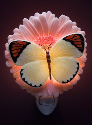 Orange Tip/Gerber Nightlight - Ibis & Orchid Designs
